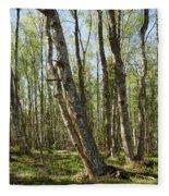 White Birch Forest Fleece Blanket