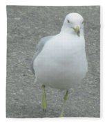 White Bird Of Alberta Fleece Blanket