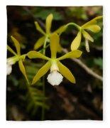 White Butterfly Orchid Fleece Blanket