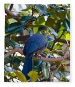 White-cheeked Turaco Fleece Blanket