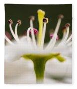 White Cherry Blossom Against Green Fleece Blanket