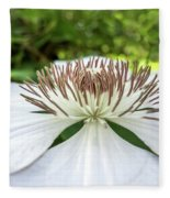 White Clematis Flower Garden 50146 Fleece Blanket