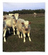 White Cows Fleece Blanket