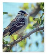 White-crowned Sparrow 0033-111017-1cr Fleece Blanket