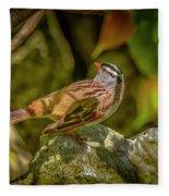 White Crowned Sparrow Fleece Blanket