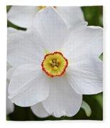 White Daffodil Fleece Blanket