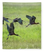 White-faced Ibis Rising, No. 2 Fleece Blanket
