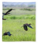 White-faced Ibis Rising, No. 3 Fleece Blanket