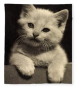 White Fluffy Kitten Fleece Blanket