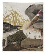 White-fronted Goose Fleece Blanket