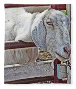White/grey Goat Head Through Fence 2 6242018 Goat 2420.jpg Fleece Blanket