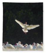 White Ibis In Flight Over Flock Fleece Blanket