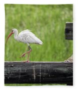 White Ibis Stepping Out Fleece Blanket