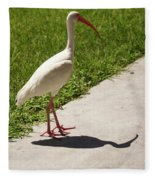White Ibis Walking Down The Street Fleece Blanket by Vincent Billotto