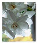 White Narcissi Spring Flower Fleece Blanket