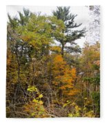 White Pine Hollow State Forest Fleece Blanket