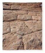 White Pocket - Nature's Pavement Fleece Blanket