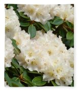 White Rhodies Landscape Floral Art Prints Canvas Baslee Troutman Fleece Blanket