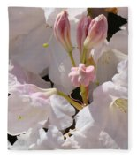 White Rhodies Pink Rhododendrons Flowers Art Prints Canvas Botanical Baslee Troutman Fleece Blanket