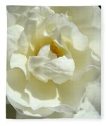 White Rose Art Prints Summer Sunlit Roses Baslee Troutman Fleece Blanket