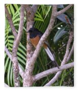 White Rumped Shama Fleece Blanket