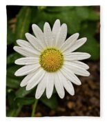 White Shasta Daisy In The Rain Fleece Blanket