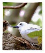 White Terns Koa And Parent...bird Love Fleece Blanket