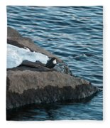 White-throated Dipper Nr 4 Fleece Blanket