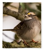 White Throated Sparrow On Branch New Jersey Fleece Blanket