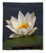 White Waterlily 1 Fleece Blanket