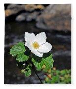 White Wild Rose In Big Thompson Canyon Fleece Blanket