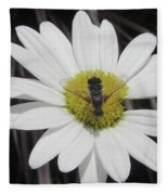 White With Bee Fleece Blanket