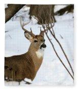 Whitetail Buck Profile Fleece Blanket