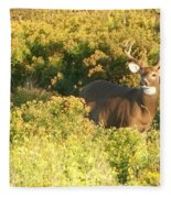 Whitetail Buck Fleece Blanket