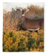 Whitetail Doe Fleece Blanket