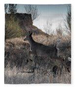 Whitetail In Flight Fleece Blanket