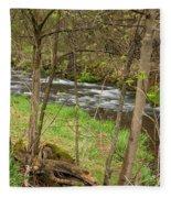 Whitewater River Spring 43 Fleece Blanket