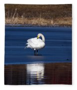 Whooper Swan 2 Fleece Blanket
