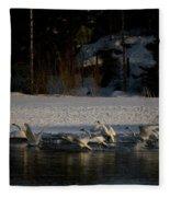 Whooper Swan Nr 13 Fleece Blanket