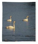 Whooper Swan Nr 8 Fleece Blanket