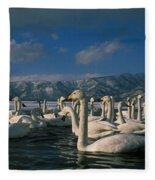 Whooper Swans In Winter Fleece Blanket