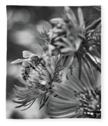 Wild Aster And Honey Bee Bw Fleece Blanket