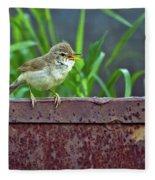 Wild Bird In A Natural Habitat.  Fleece Blanket