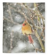 Wild Birds Of Winter - Female Cardinal In The Snow Fleece Blanket