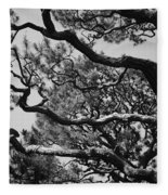 Wild Branches Fleece Blanket