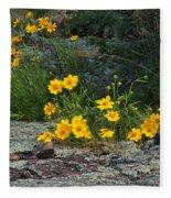 Wild Coreopsis On Hughes Mountain 1 Fleece Blanket