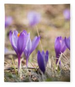 Wild Crocus Balkan Endemic Fleece Blanket