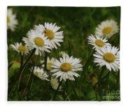 Wild Daisies Fleece Blanket
