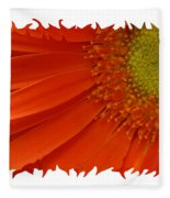 Wild Daisy Fleece Blanket