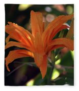 Wild Daylilies 1167 H_2 Fleece Blanket